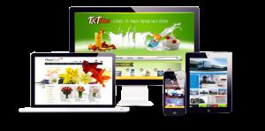 Thiết kế website tại Quảng Bình