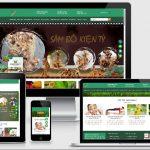 Mẫu website thực phẩm chức năng tăng cân sâm bổ kiện tỳ