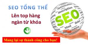 Dịch vụ SEO web tổng thể tại Vĩnh Phúc