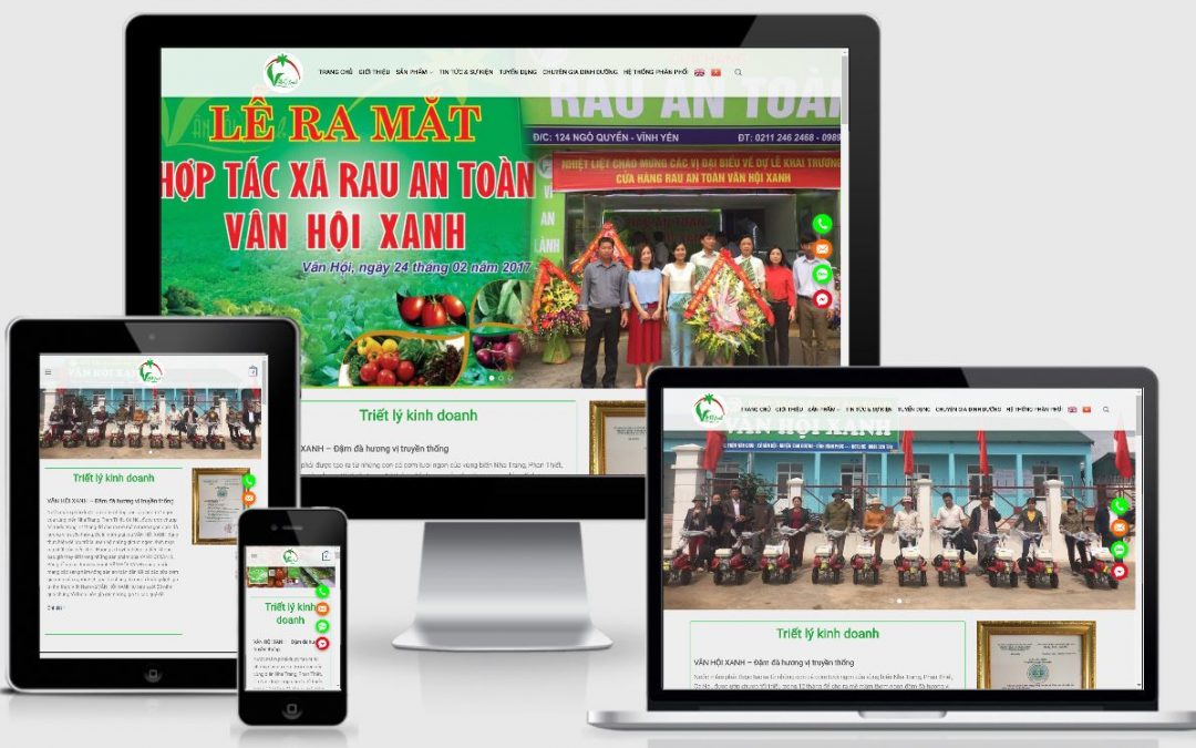 Thiết kế web thực phẩm sạch Vân Hội Xanh Vĩnh Phúc
