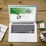 Top Công ty thiết kế web chuyên nghiệp tại Vĩnh Phúc